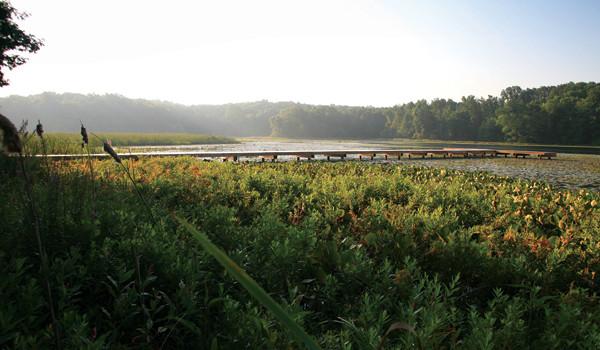 Cranes Pond
